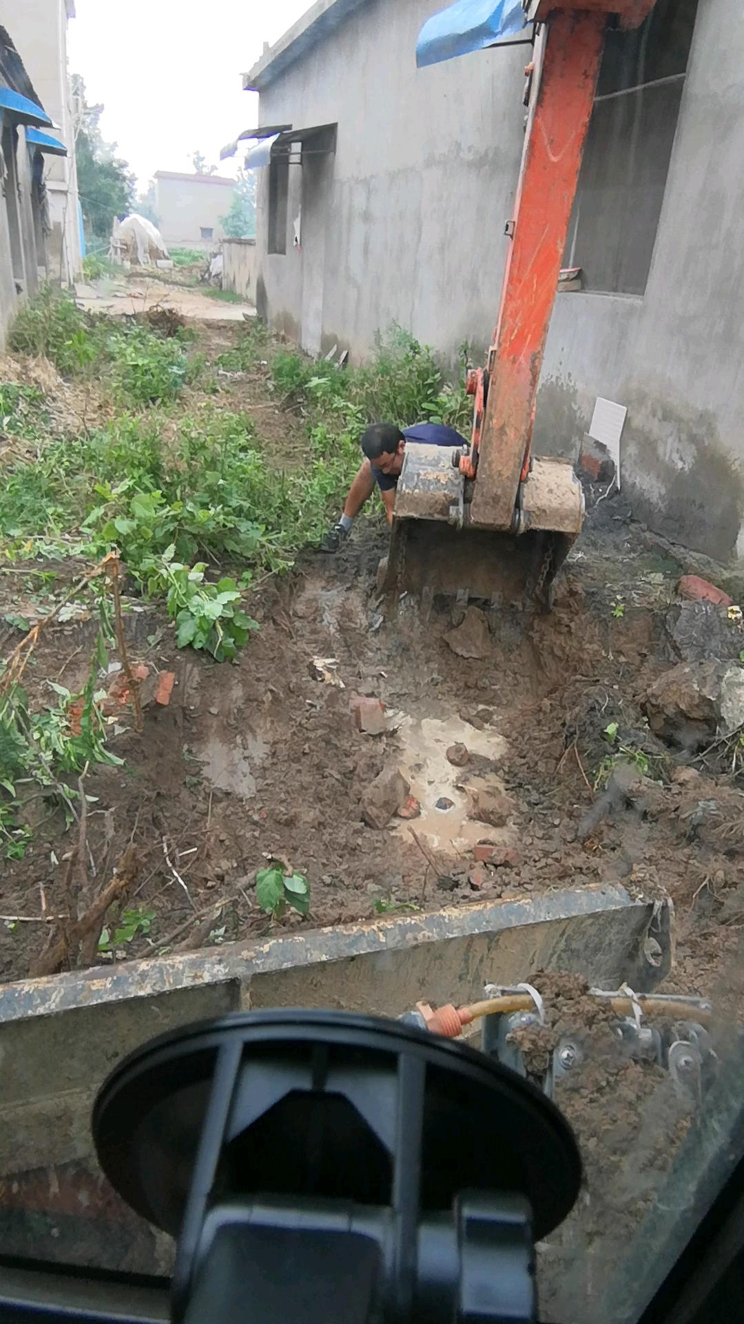 【我要上头条】小挖巧挖树根