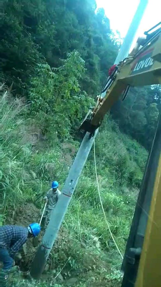 农村电网改造!65机立12米电杆,