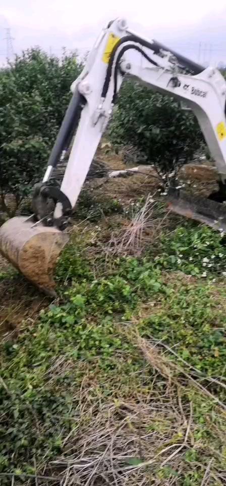 入行第一次工作山猫微挖果园挖坑施肥