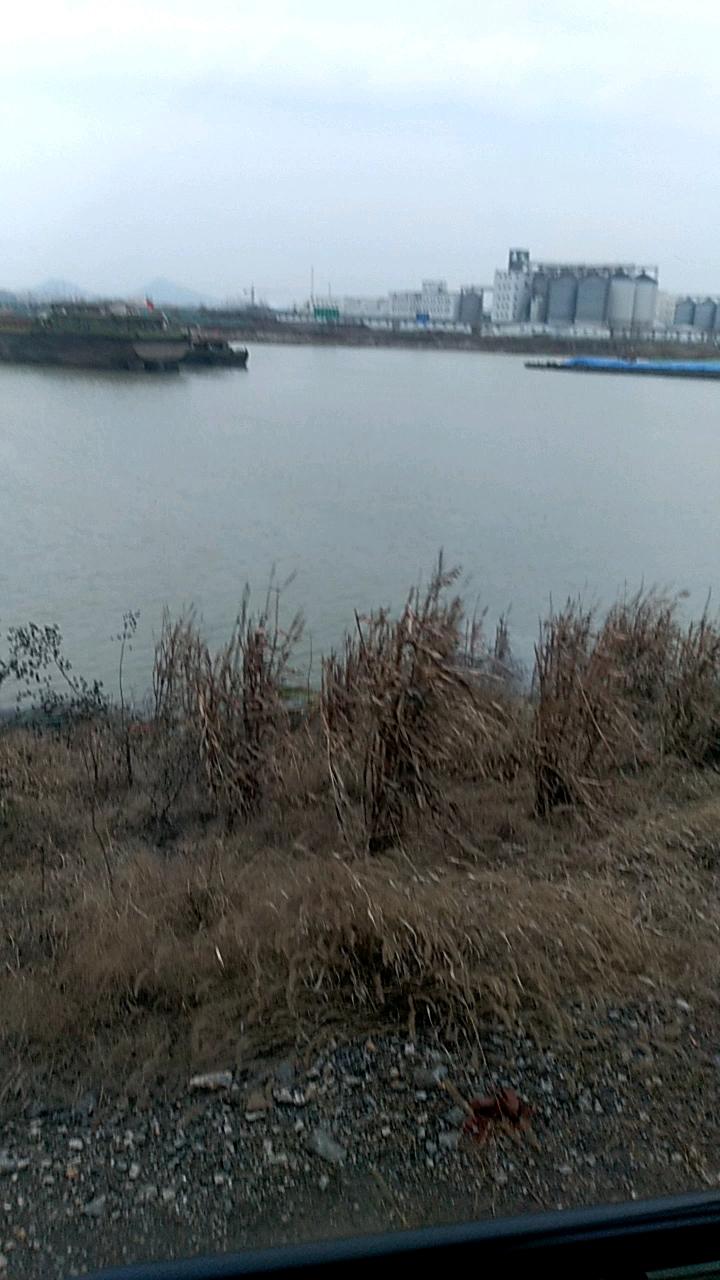 【金猪送福】斗山215-9c挖机的1500小时使用报告
