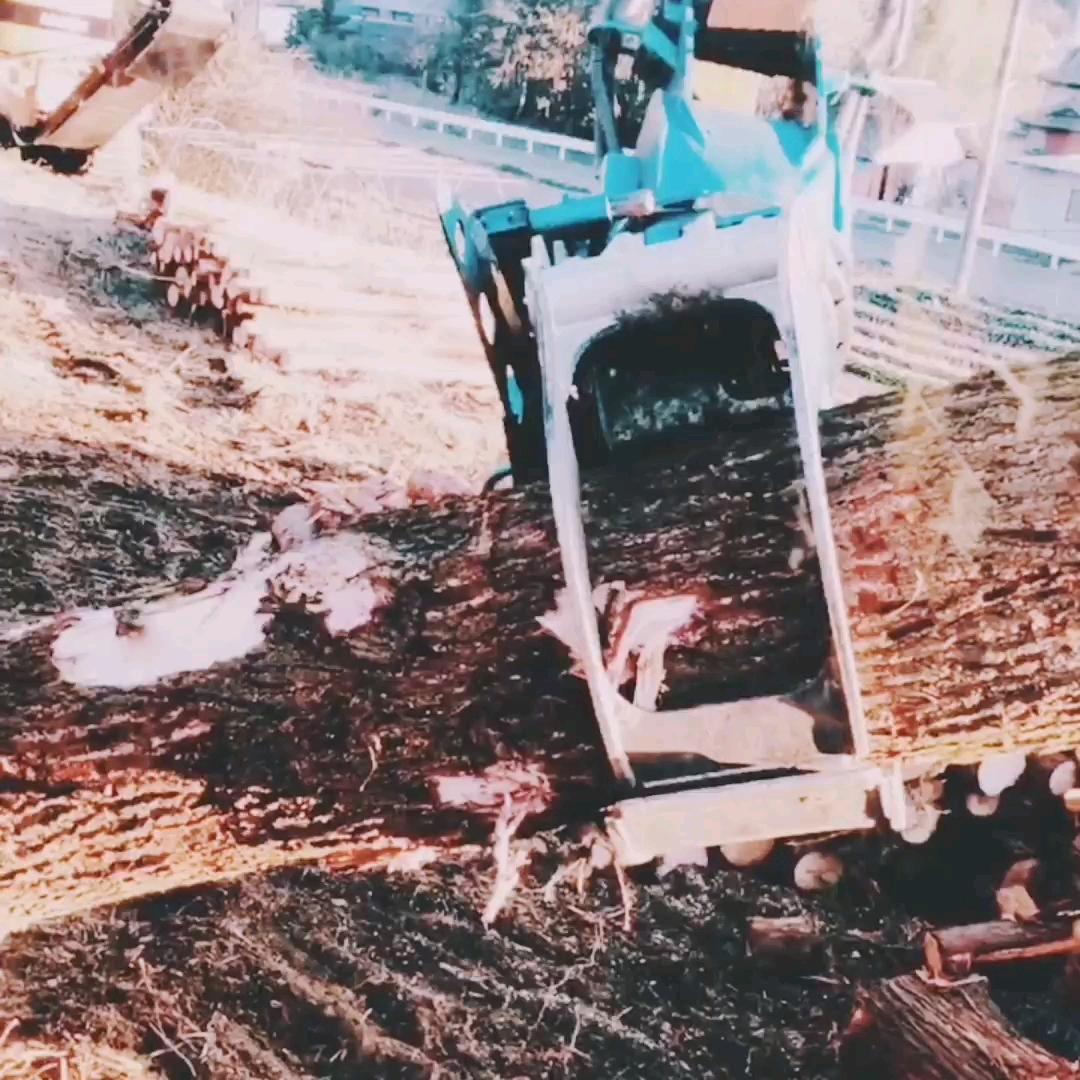 伐木机-帖子图片