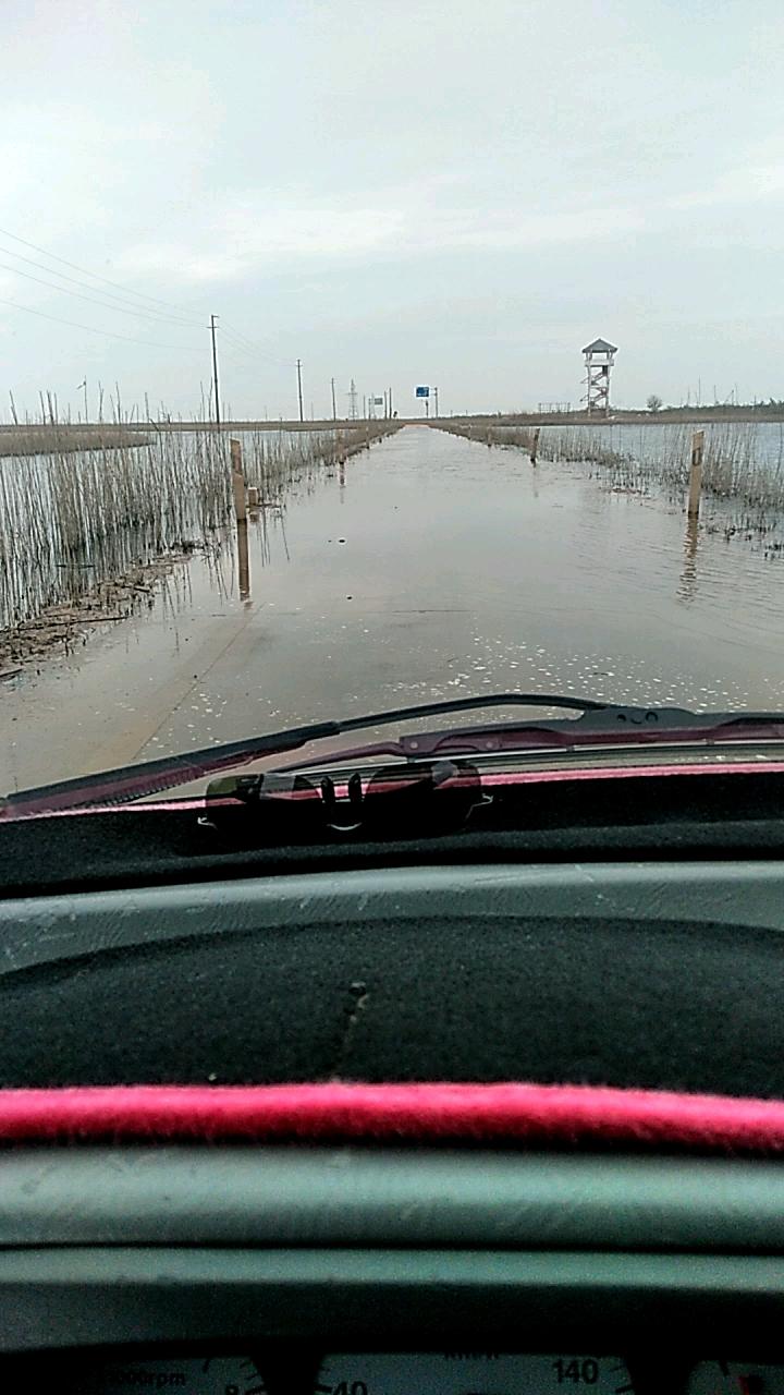 鄱阳湖湿地水上公路