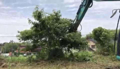 专业理发师傅:神钢SK135SR灌木切除机
