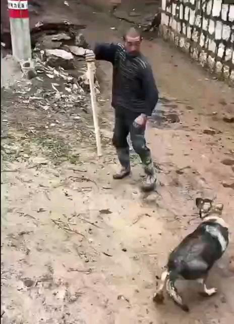 洪七公的打狗棒