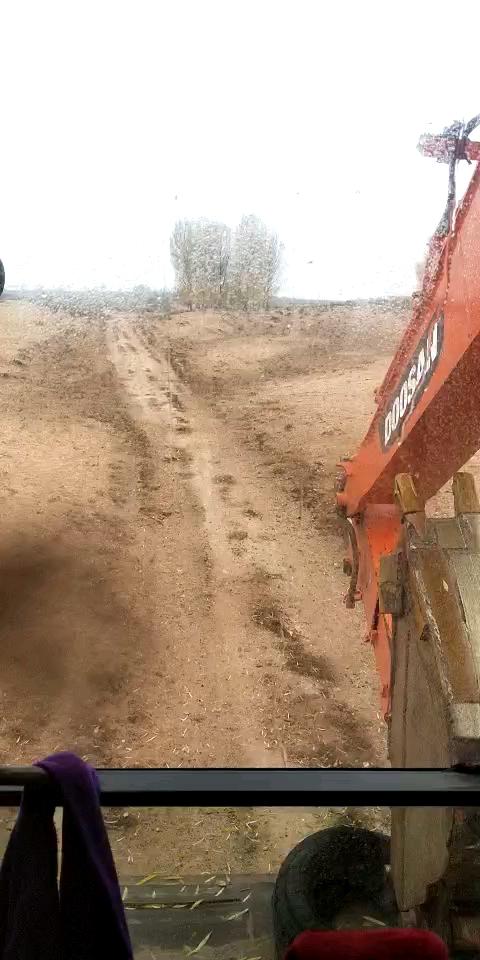 【金猪送福】95年的佩奇开挖机