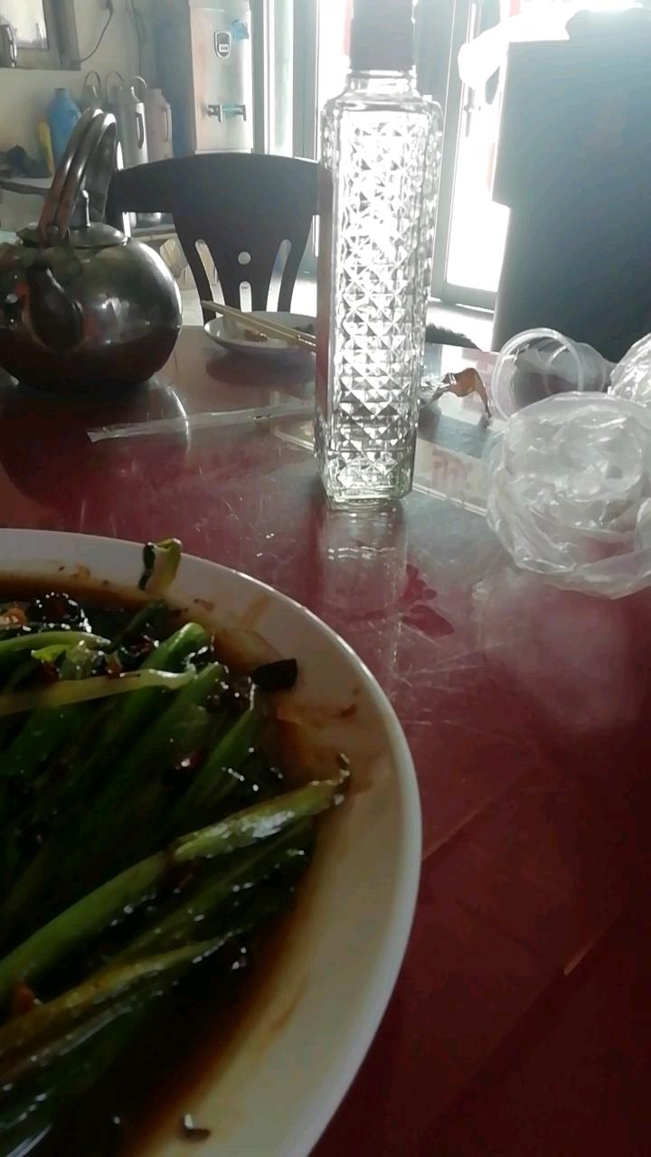 【我的铁甲日记第205天】一个菜没吃完呢,一瓶老村长喝没