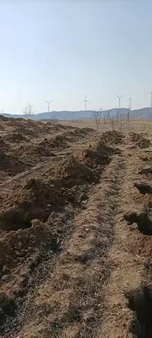 【我为柳工代言】7吨热门小挖,柳工9075E挖掘机评测-帖子图片