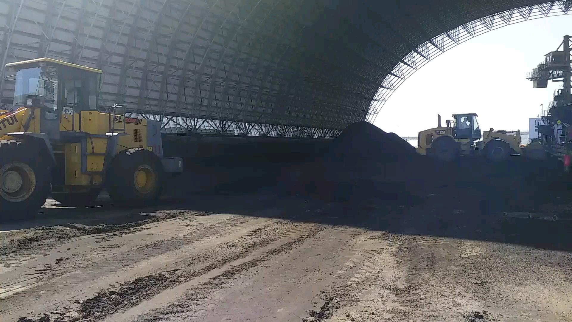 煤场又光了-帖子图片