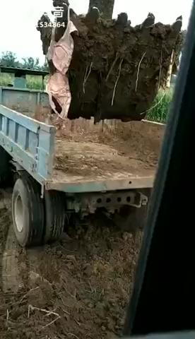 天下司机,挖机最骚