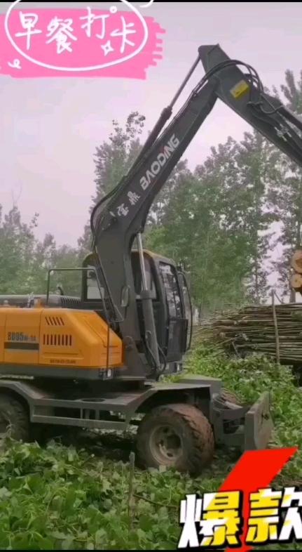 德州宝鼎抓木机挖掘机-帖子图片
