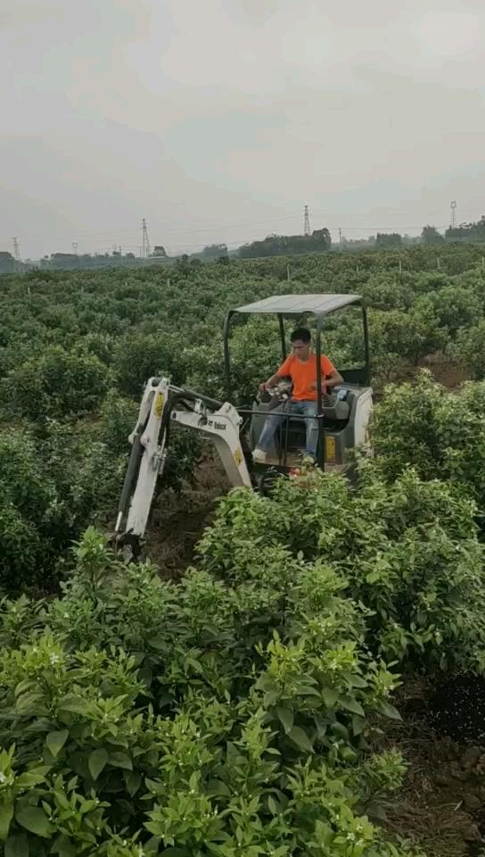 果园微挖日常操作