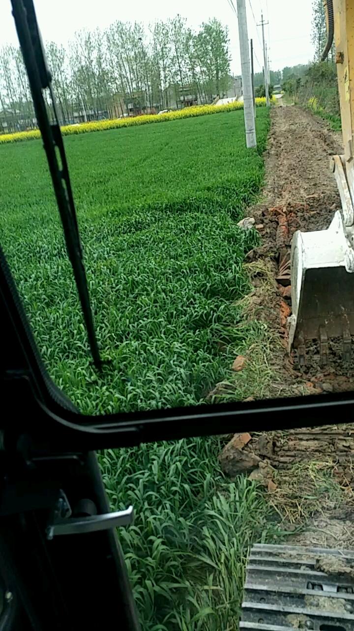 【一招鲜】砖头路改水泥路其实不难
