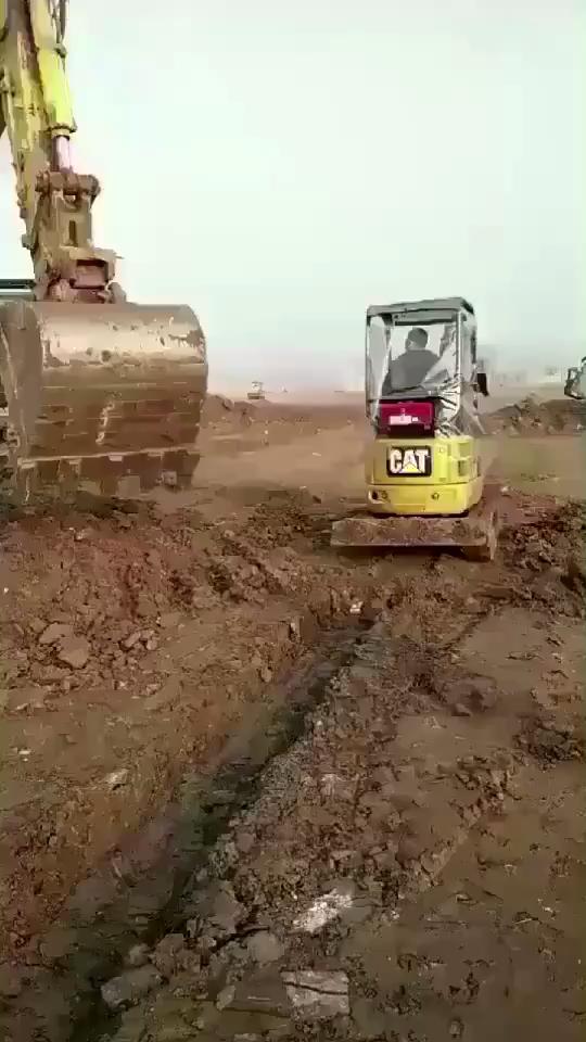调皮的挖掘机老爸和儿子