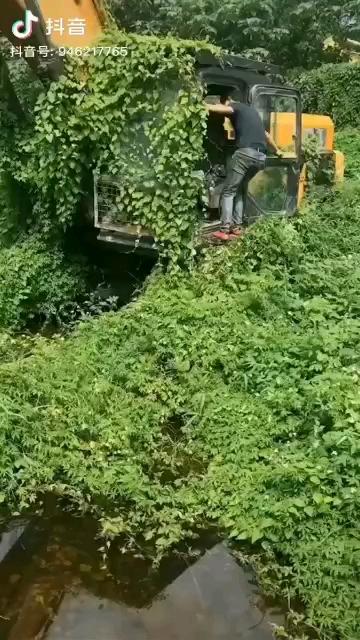 挖机长草视频来一波