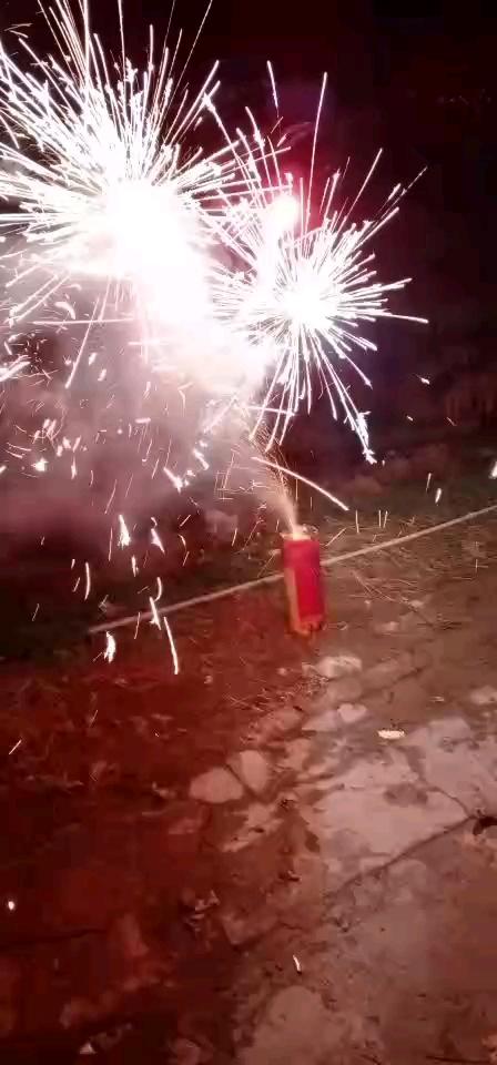 【金鼠打卡第七天】新年快乐