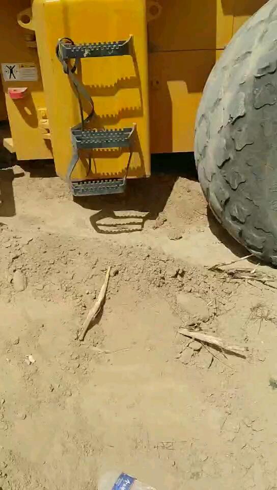 自己公司挖掘机日常保养-帖子图片