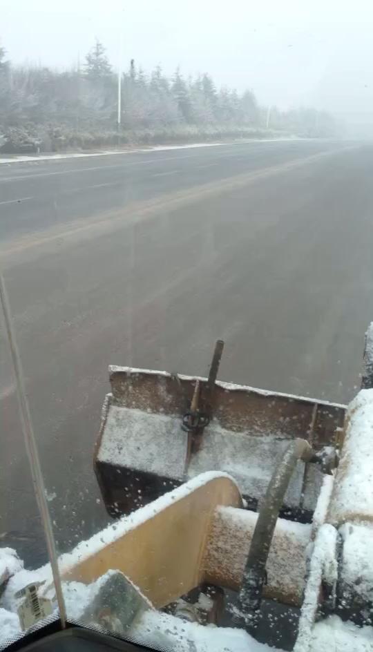 今天早上的雪
