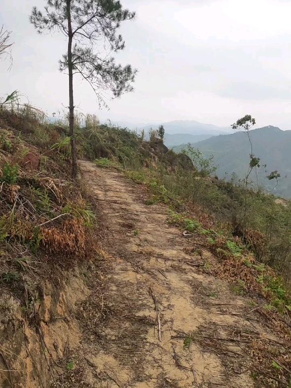 [五一摄影大赛]山顶风景