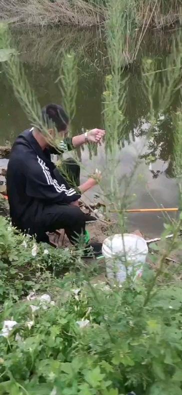 釣魚-帖子圖片