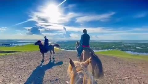 我的草原我的马