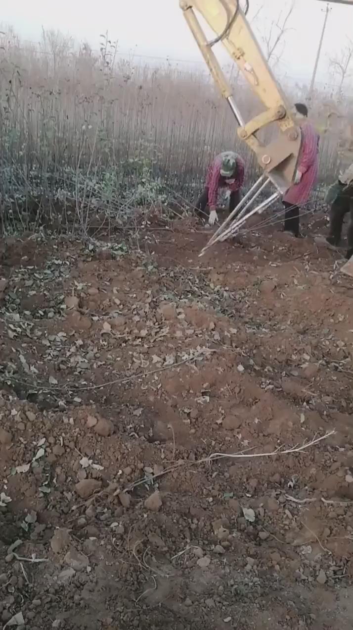 挖机新属具