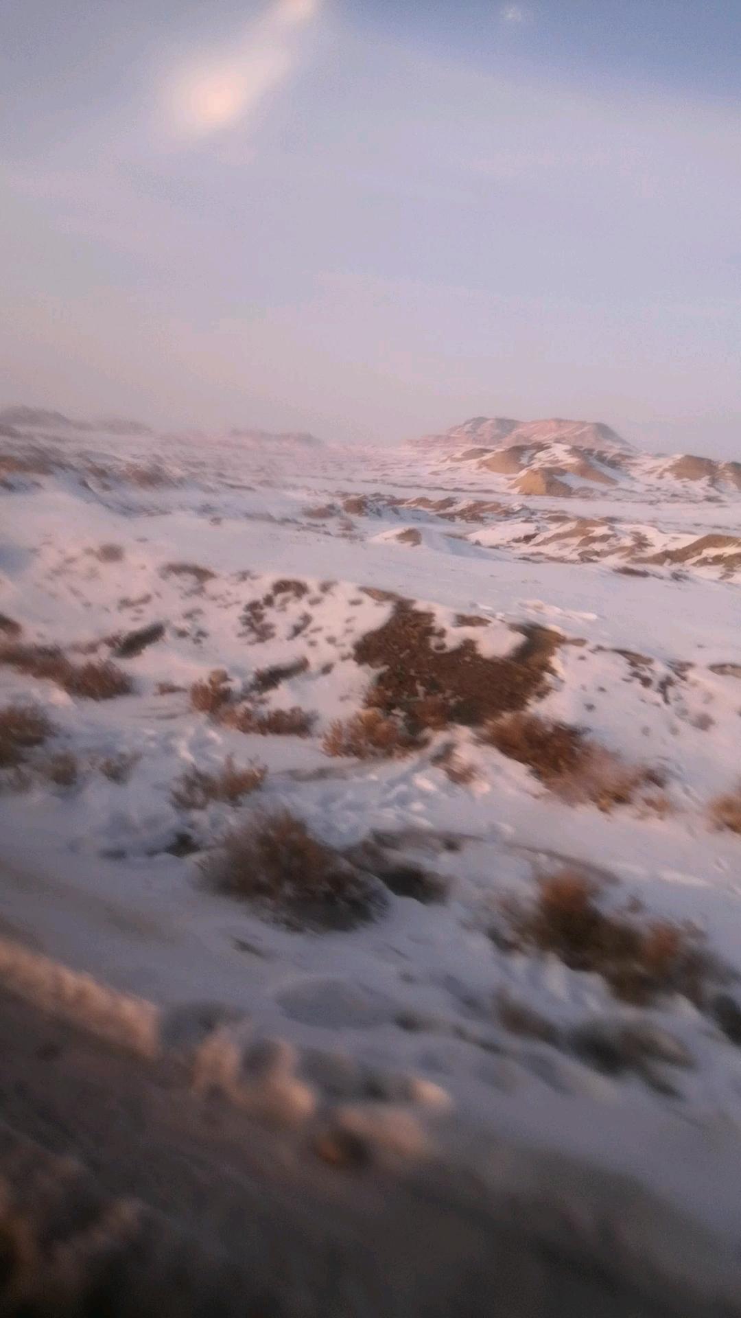 【金鼠打卡第七天】路途全是雪